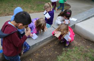 Mary Frank students learn about nature by being nature spies